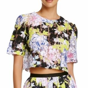 French Connection   Botanical Trip Lace Crop Top